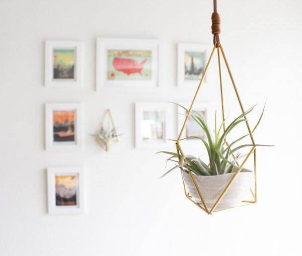 hängende pflanzen hängepflanzen balkon zimmerpflanzen kreative bastelideen