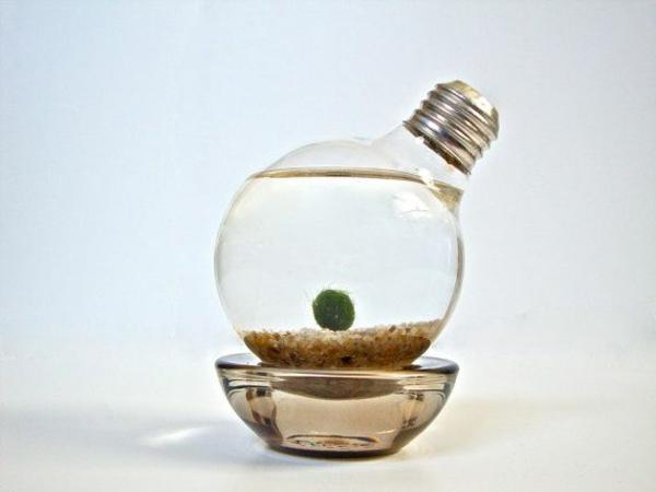 lampe-glühbirnenform-diy-deko-art