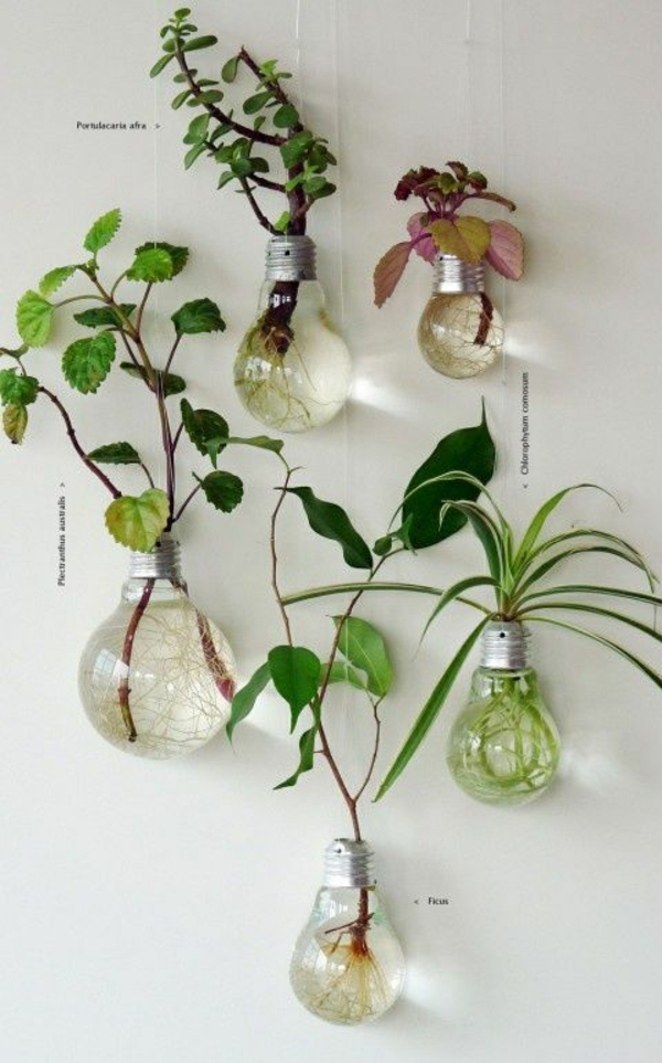 lampe-glühbirnenform-diy-deko-wanddeko