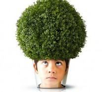 Moderne Pflanzgefäße mit Gesicht – lustige coole Deko Ideen