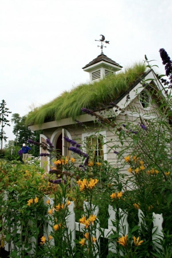dachbegrünung gartenhaus exterior ideen