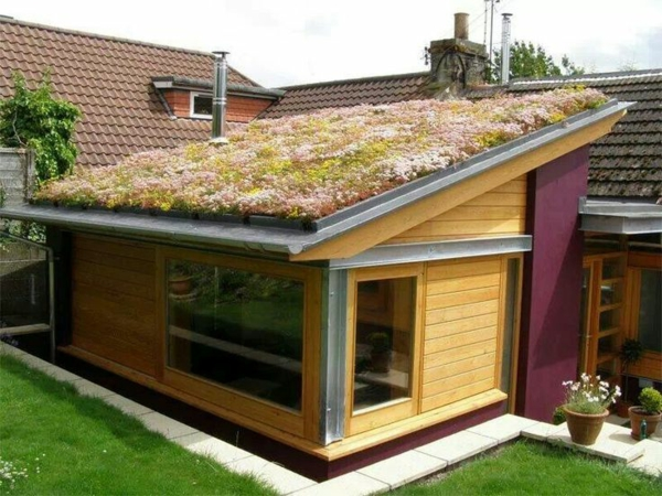 patio designideen dachbegrünung gartenhaus