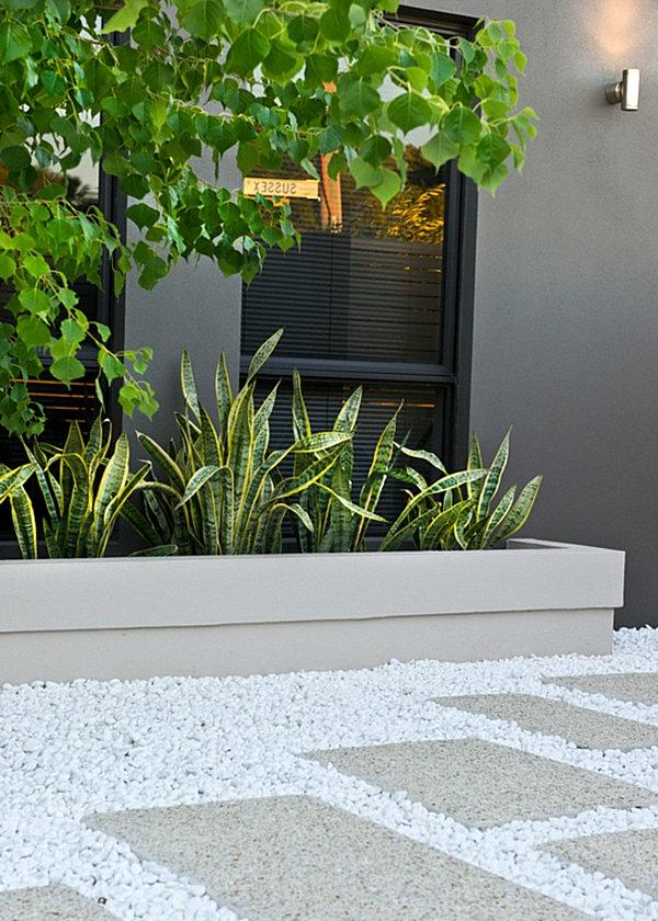 patio gartendesign pflanzenlexikon  exterior