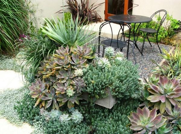 gartendesign pflanzenlexikon  schöne dekoration