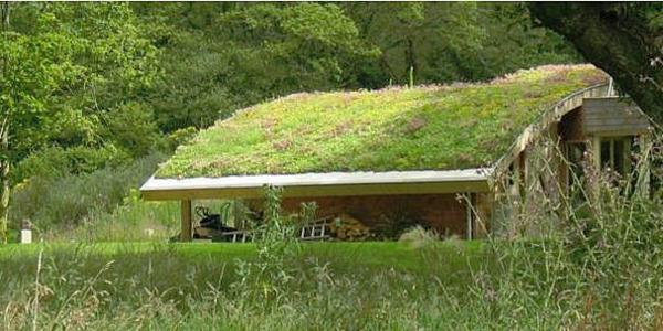 landschaft dachbegrünung gartenhaus exterior ideen