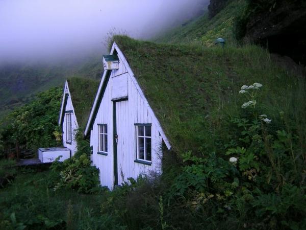 landschaft dachbegrünung gartenhaus märchenhaus