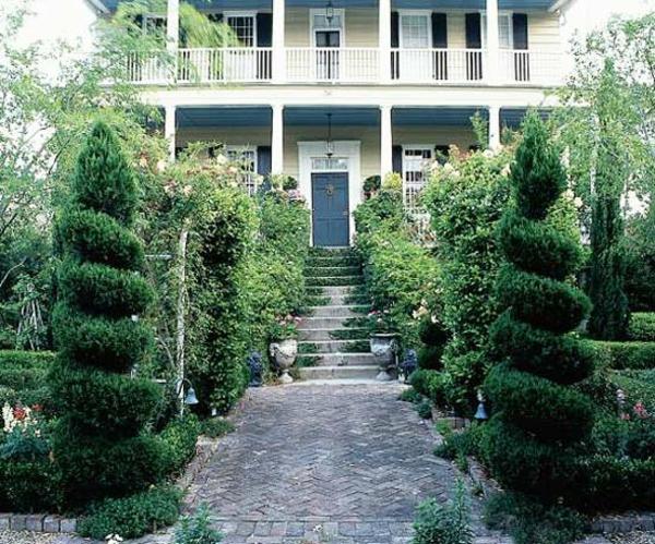 vorgarten gestalten ideen dramatischer look spiralförmige bäume