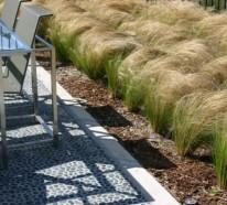 Pflegeleichte Gartenpflanzen für den Sommer