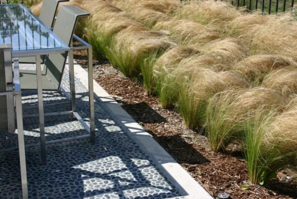 pflegeleichte gartenpflanzen hitzefest gartengestaltung und landschaftsbau sommer ideen