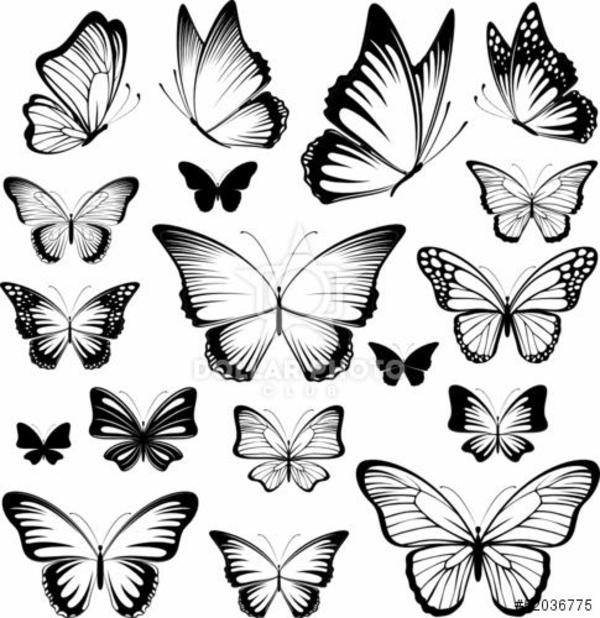 tattoo schmetterlinge vorlagen designs