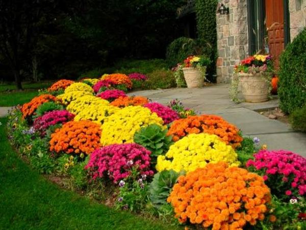 vorgarten garten design farbige blumen rasenfläche