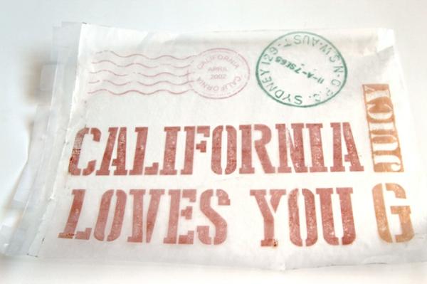 DIY Holzkiste und Aufbewahrungsbox aus Europaletten california loves you