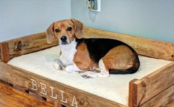 Hundebetten Aus Holz Grosse Hundesofas Aus Europaletten Selber Machen