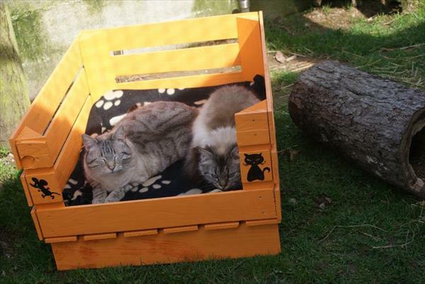 Hundebetten aus Holz katze  sofas haustiere sicher