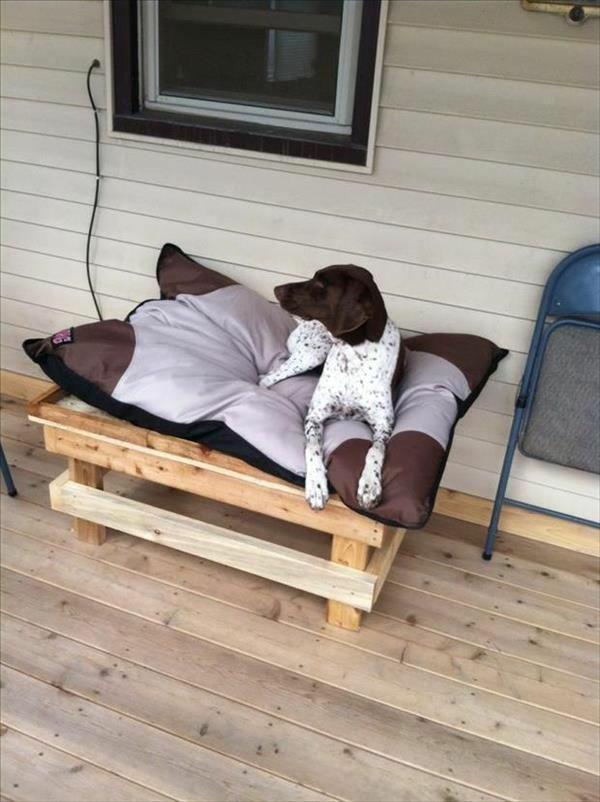 Hundebetten Holz katzen sofas haustiere veranda
