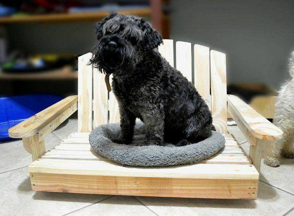Hundebetten aus Holz katzen sofas haustiere weiß