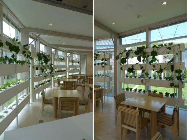 Moderne architektur zu wohlt tigen zwecken in fukushima for Innenraumdesign studieren