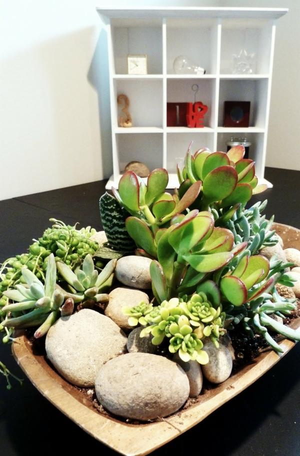 tolerante Zimmerpflanzen tischdeko grün natur