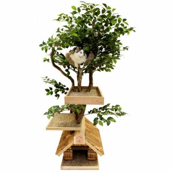 Katzenmöbel und Kratzbäume pflanzen