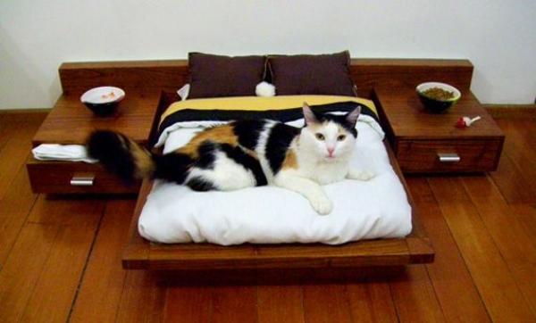 Tierfreundliche Katzenmöbel und Kratzbäume schlafzimmer