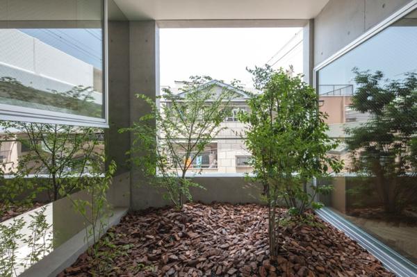 Zimmergarten im japanischen Haus von k2yt gegen den Lärm
