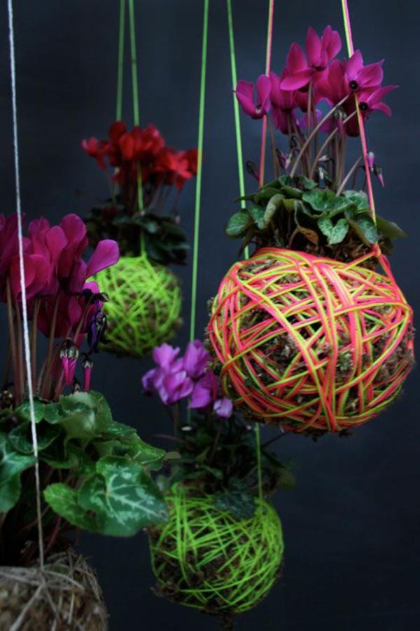 blühende zimmerpflanzen hängend deko ideen blumenampel
