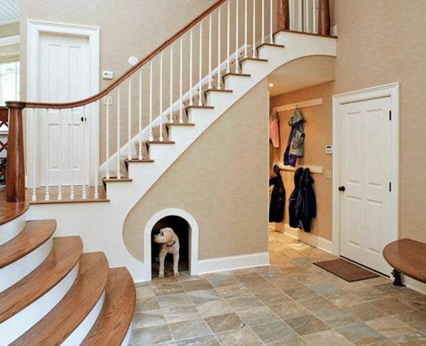 Geschenkideen für Hunde  treppenhaus
