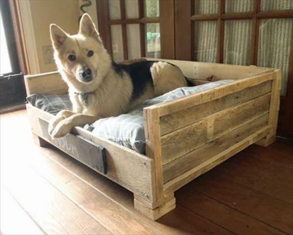 hundebetten aus diy holz europaletten praktisch