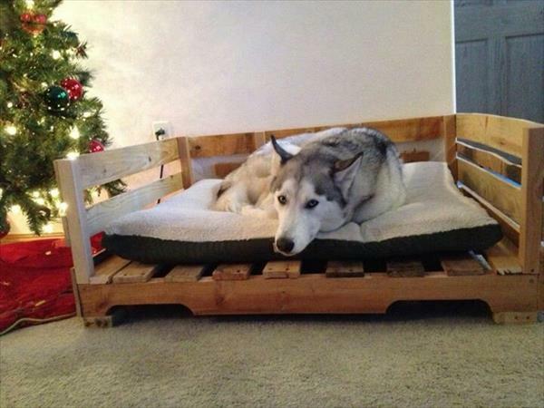 diy holz hundebetten aus europaletten rahmen