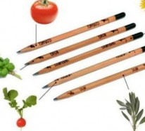 Stifte, aus denen man zu Hause einen Garten machen kann
