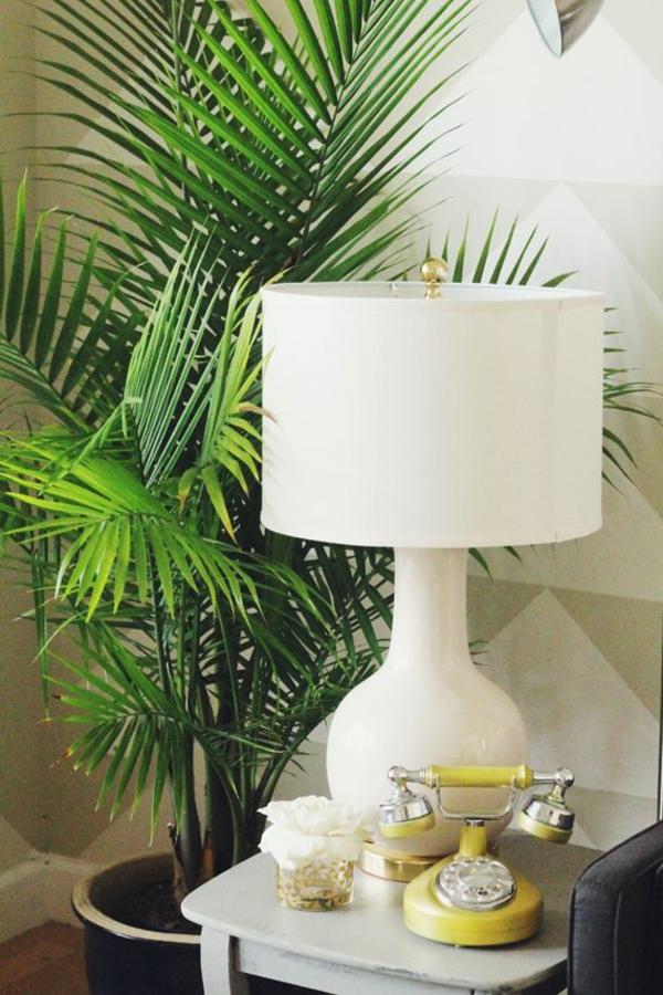 feng shui pflanzen wohnideen positive energie palmen arten