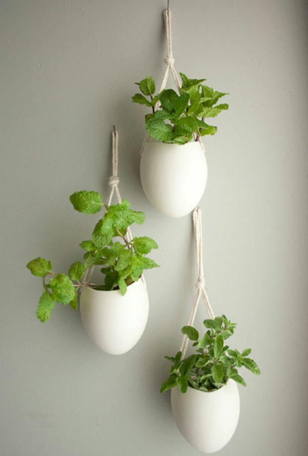 feng shui zimmerpflanzen grüne wohnideen kreative wadgestaltung