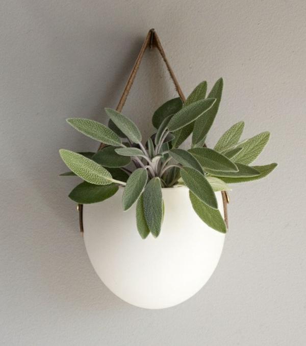 Hängende Zimmerpflanzen - Bilder Von Anreizenden Blumenampeln Zimmerpflanzen Wohnideen