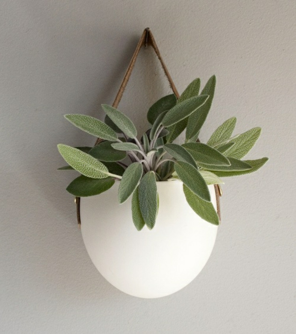 feng shui zimmerpflanzen grüne wohnideen positive energie kreative wadgestaltung