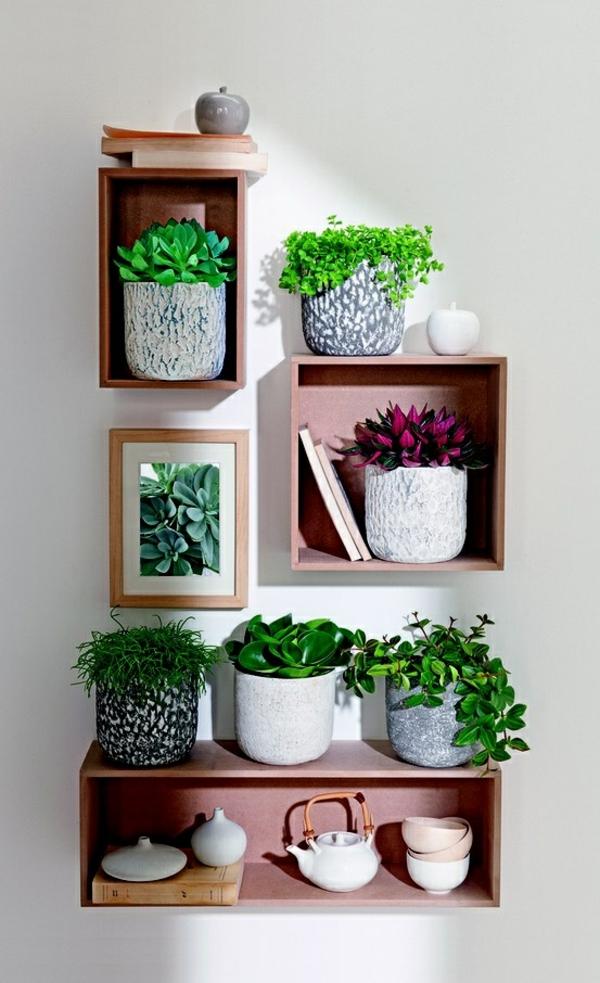 feng shui zimmerpflanzen kreative wadgestaltung grüne wohnideen