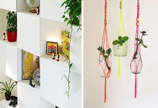 Feng Shui Pflanzen Für Harmonie Und Positive Energie Im Wohnraum Zimmerpflanzen Wohnideen