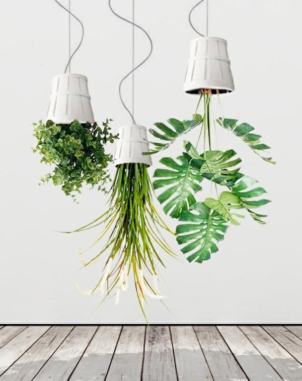 hängende pflanzen kopfüber deko ideen zimmerpflanzen bestimmen