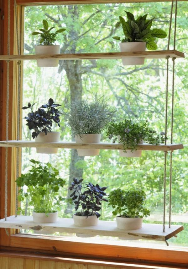 hängende zimmerpflanzen deko ideen holzregal hängend topfpflanzen