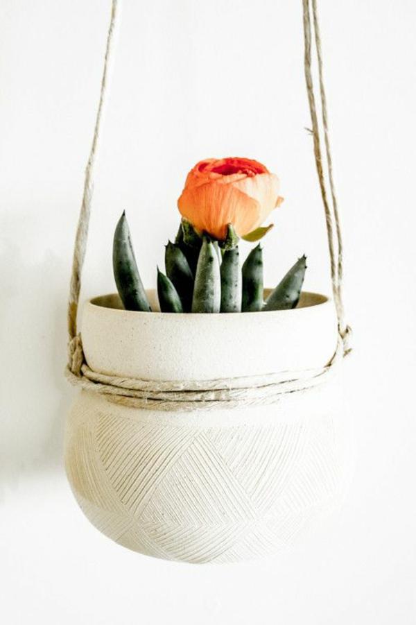 hängende zimmerpflanzen deko ideen topfpflanzen
