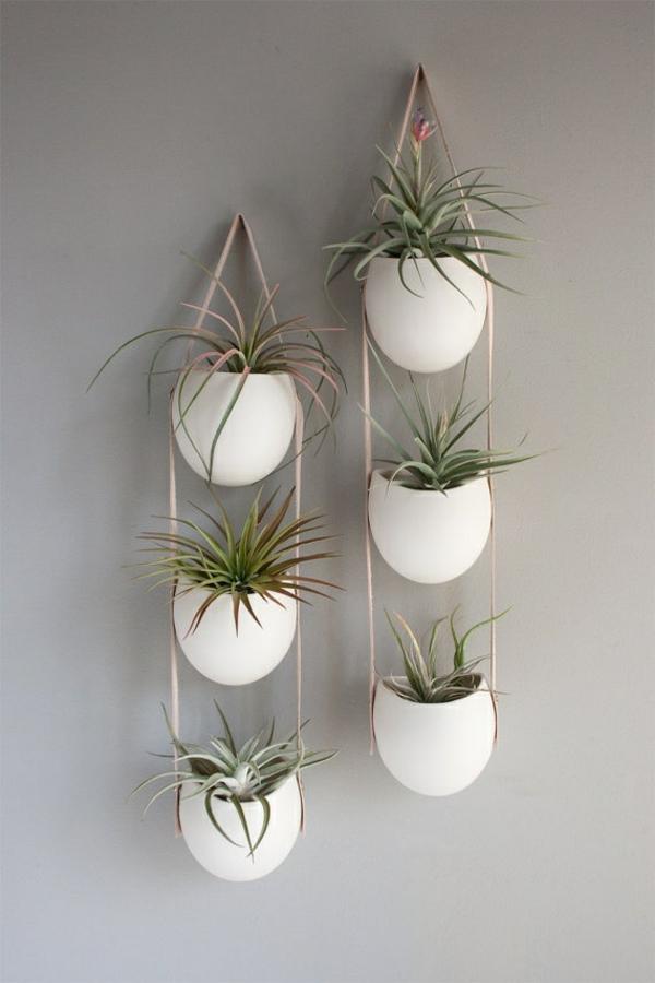 hängende zimmerpflanzen grüne wohnideen kreative wadgestaltung