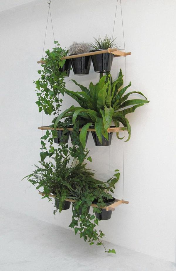 hängende zimmerpflanzen holzplatten regal hängend deko ideen