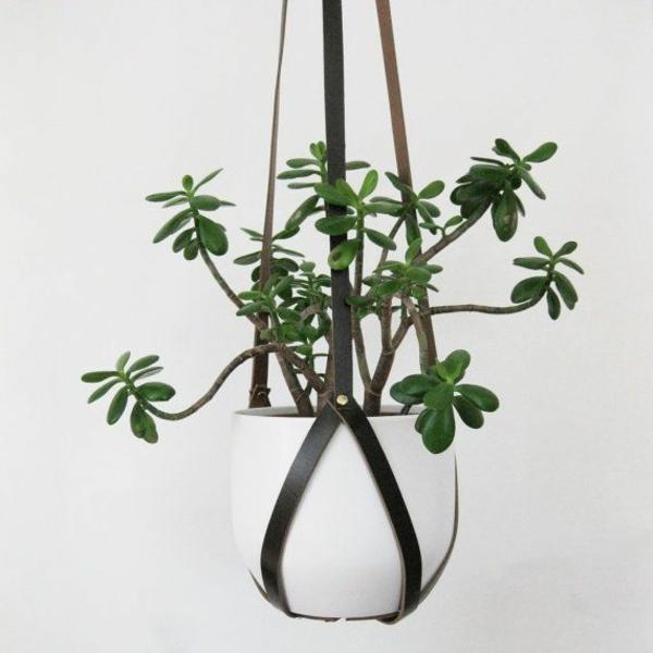 hängende zimmerpflanzen ledergürtel deko ideen blumenampel