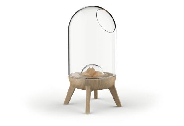 oval möbel liegen katzen hunde glas