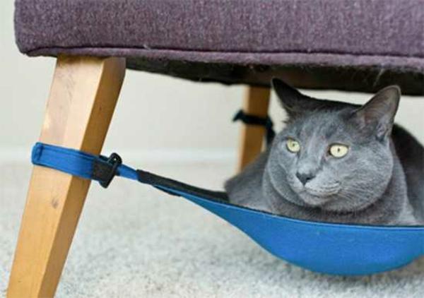 haustier möbel liegen katzen hunde hängematte