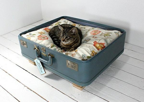 auflagen möbel liegen katzen hunde koffer