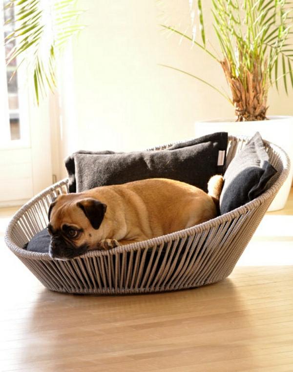 haustier möbel liegen katzen hunde rattan