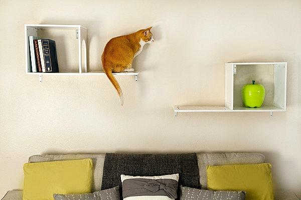 haustier Katzenmöbel und Kratzbäume liegen katzen hunde regale