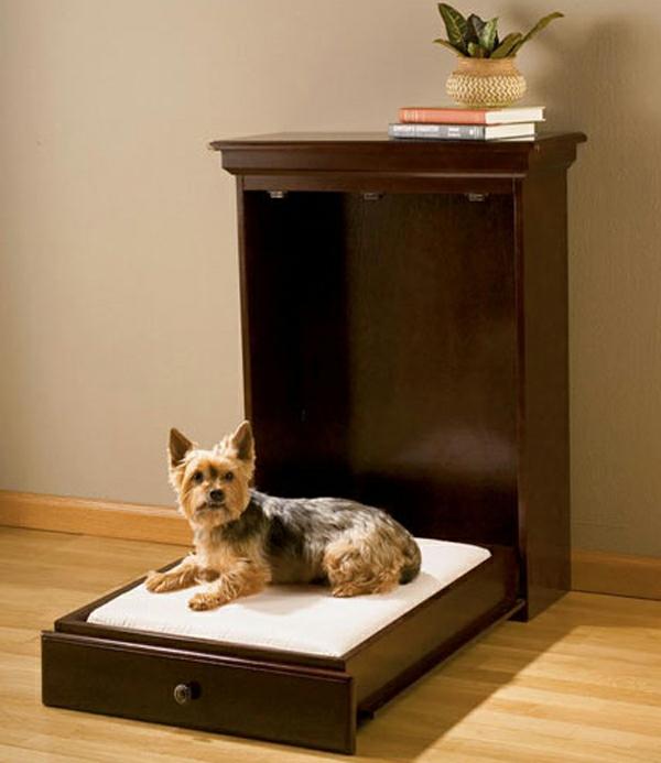 haustier möbel liegen katzen hunde schrank