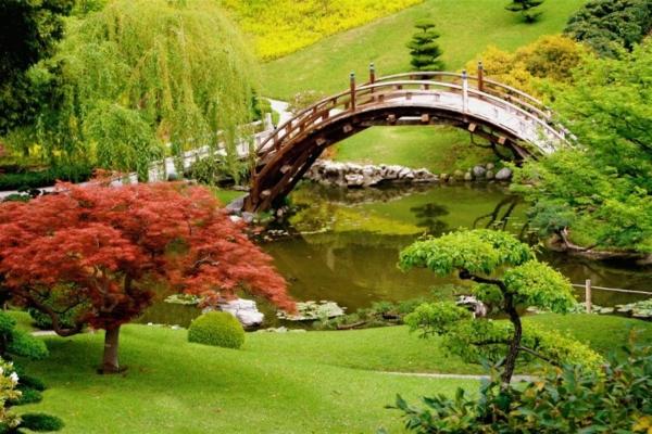 japanischer garten schön brücke rasenflächen