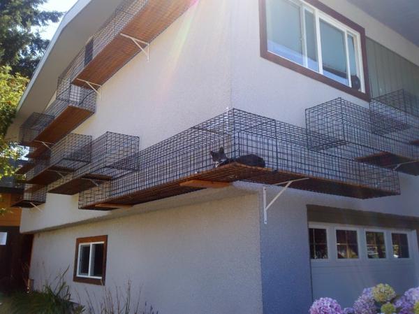 katzenmöbel design haus metall fassade